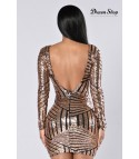 Sequin stripe Vtule Dress