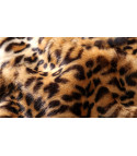Pelliccia Leopard Hilly