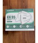 Mascherine KN95 (FFP2)